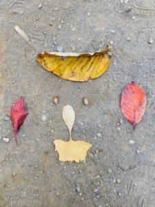 【湘南台】歩いて探そう!秋のお散歩イベント✨